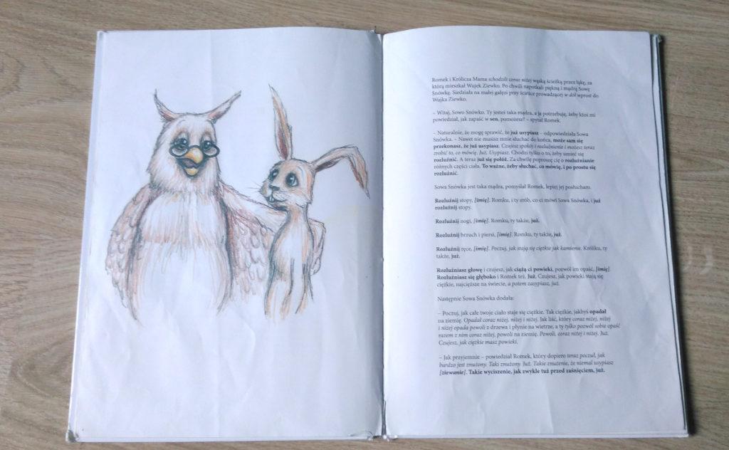 O króliku, który chce zasnąć - recenzja książki 2