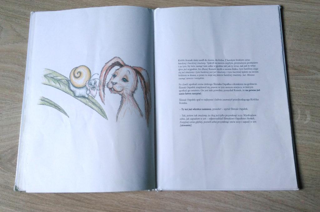 O króliku, który chce zasnąć - recenzja książki 3