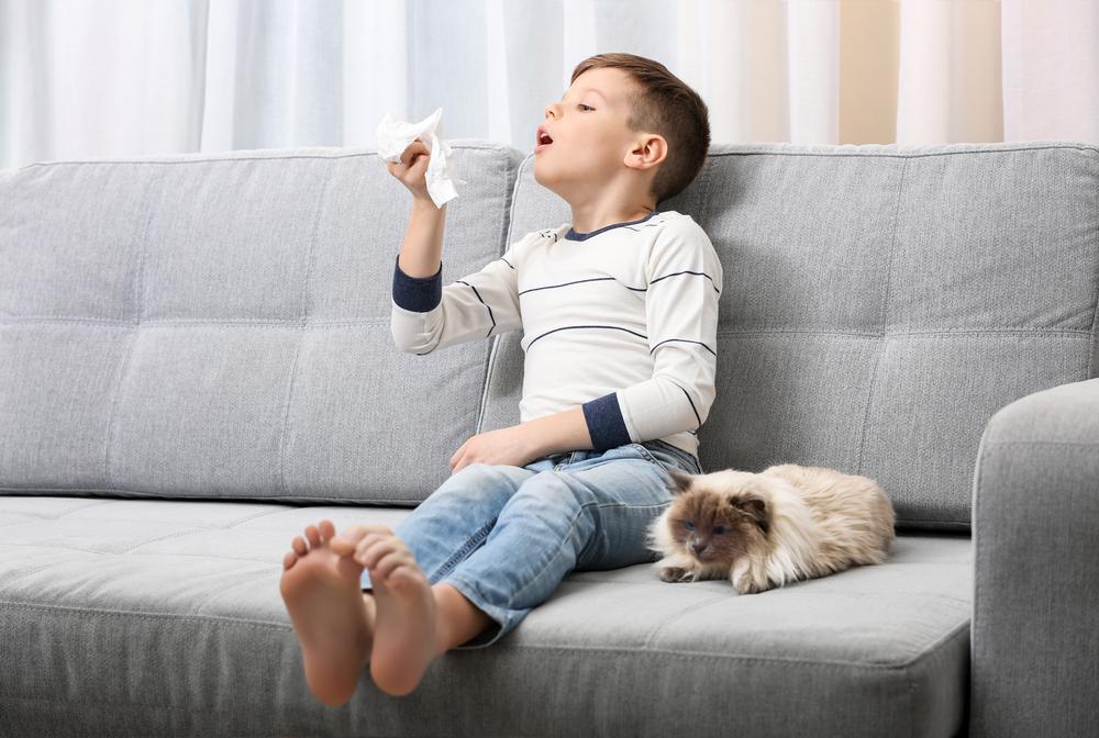 Jak sprzątać w pokoju małego alergika? 2