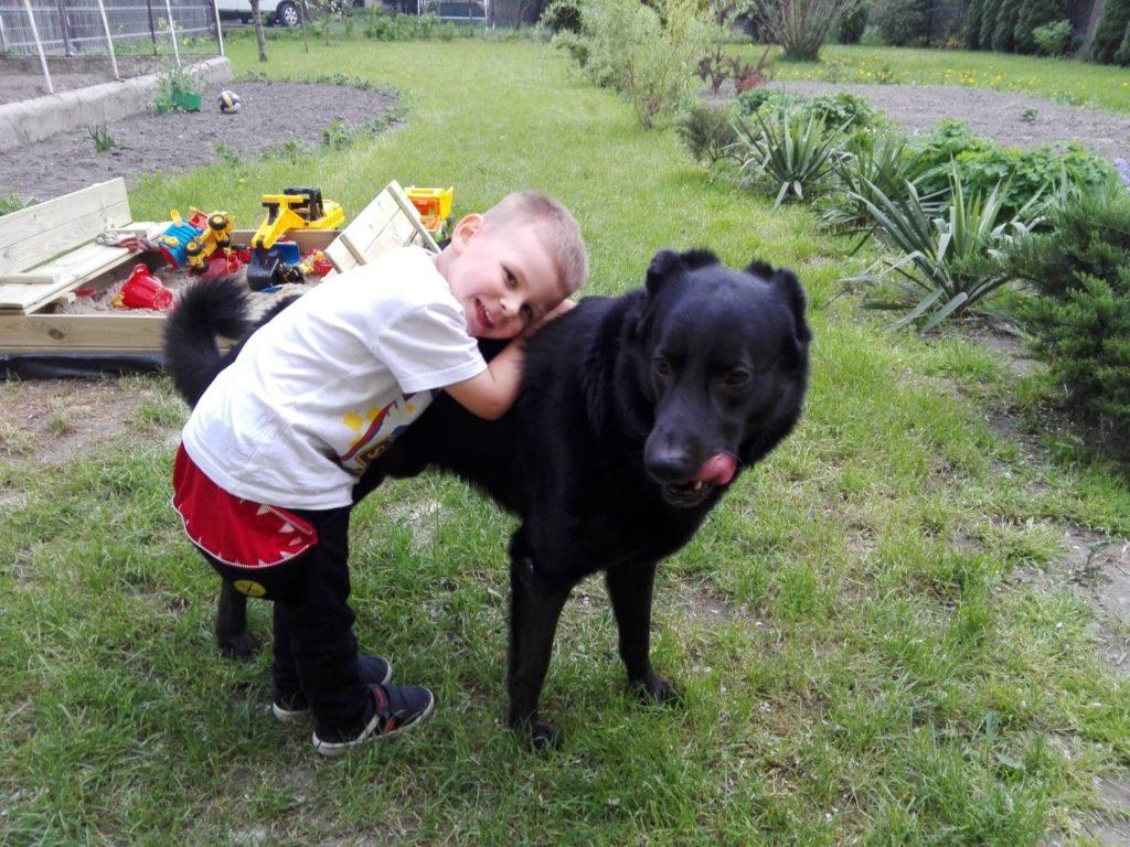 Pies najlepszym przyjacielem… alergika?