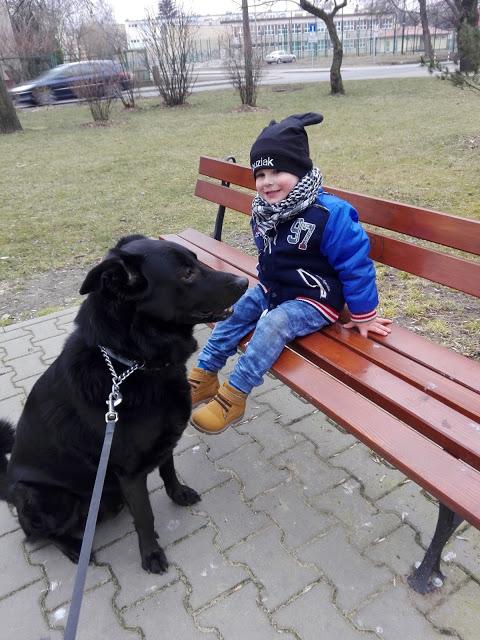 Pies najlepszym przyjacielem... alergika? 2